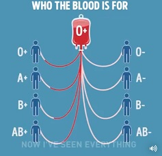 blood types data
